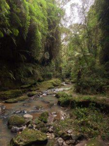 canyon-rio-da-prata