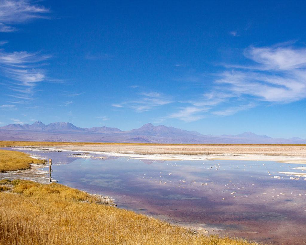 Passeio no Deserto do Atacama: Laguna Cejar