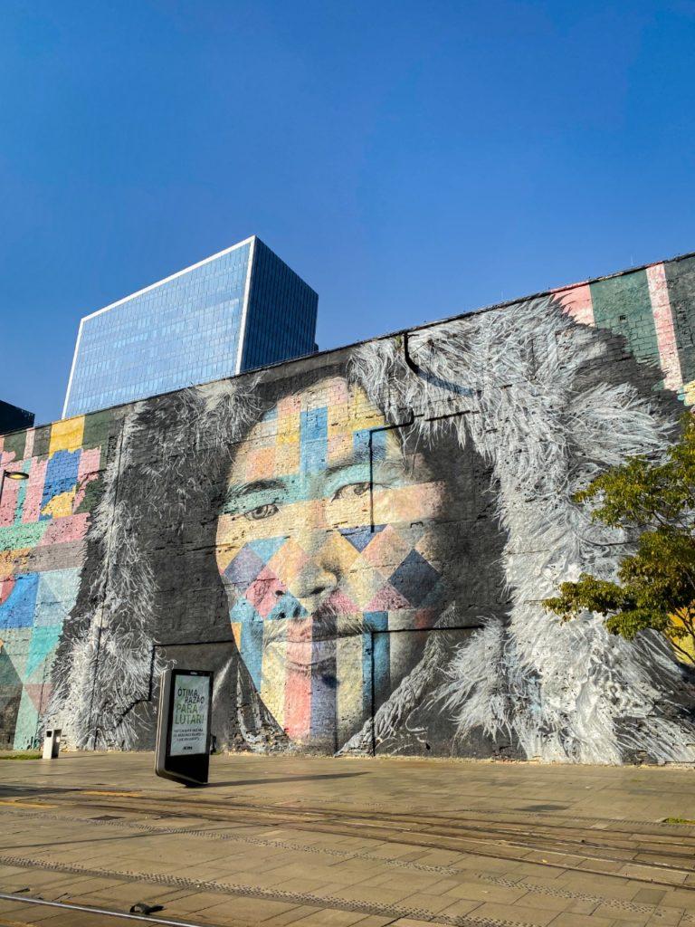 mural-etnias (2)