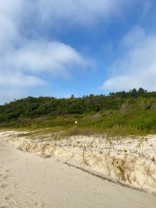 praia-dos-ilheus-governador-celso-ramos (12)