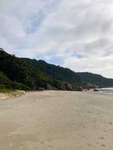 praia-dos-ilheus-governador-celso-ramos (13)