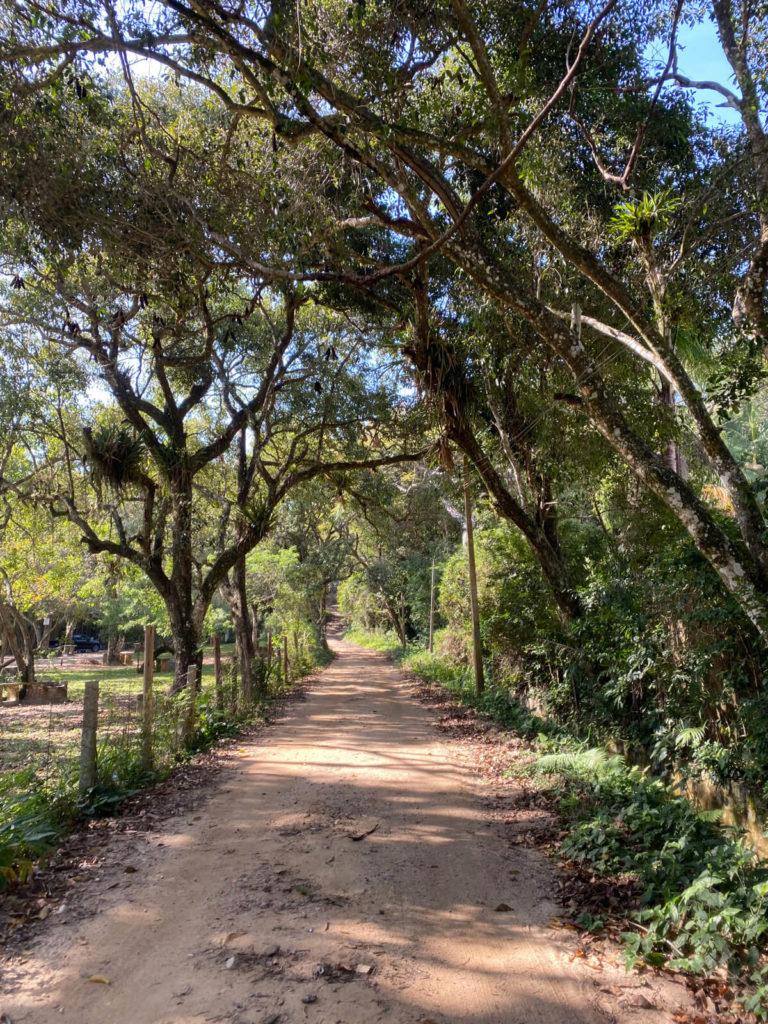 praia-dos-ilheus-governador-celso-ramos (18)