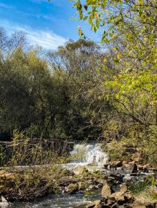 cachoeiras-rota-das-aguas-videira-sc (6)