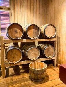 museu-do-vinho-mario-de-pellegrin-videira-sc (7)